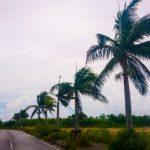 【宮古島】台風ガチ勢の筆者が教える本気の台風対策|沖縄の台風を乗り切る!