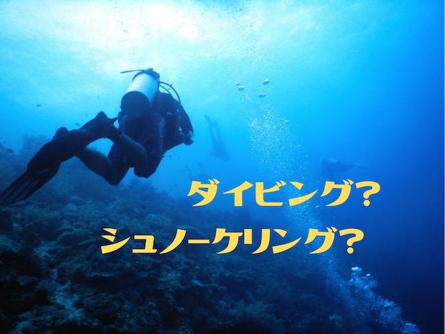 【宮古島】ダイビングとシュノーケリング、どっちがおすすめ?