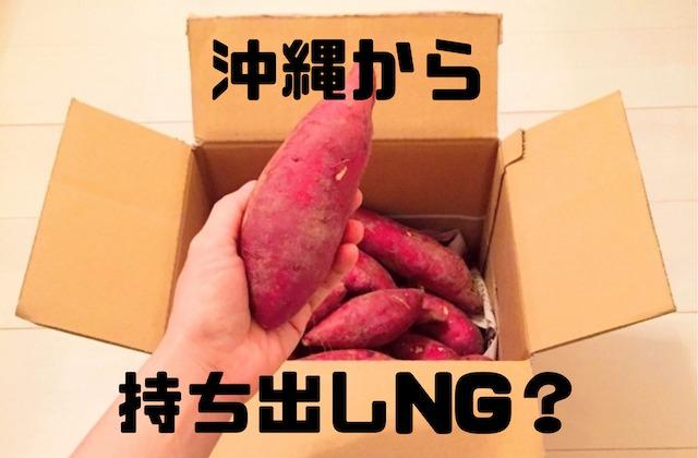 【紅芋も?】沖縄から持ち出しNGのもの|お土産に注意!