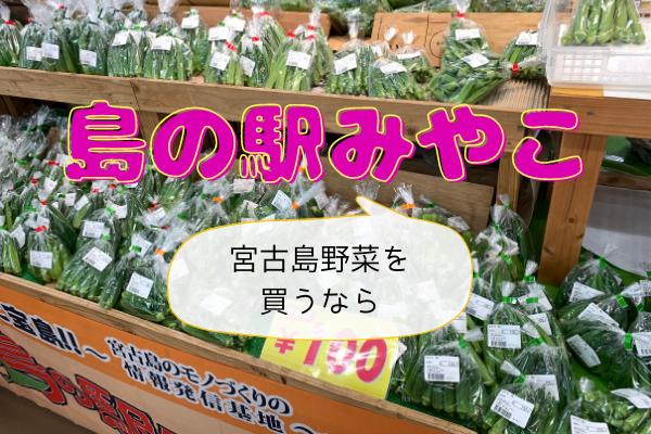お土産だけじゃない!野菜を買うなら島の駅みやこがオススメ