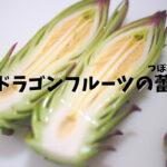 【季節限定】ドラゴンフルーツの蕾の食べ方【かなり美味しい】