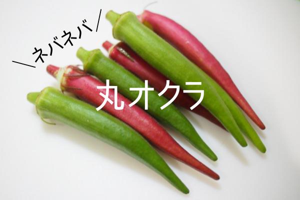 島野菜なら丸オクラがオススメ!
