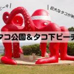 【来間島】タコ公園とタコ下ビーチで非日常体験!